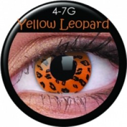 CRAZY YELLOW LEOPARD